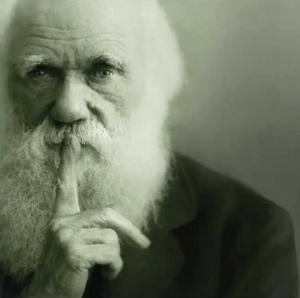 Christelijk geloof en evolutie